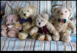A Hug of Teddy Bears