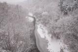 Highland Creek 3