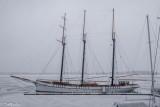 Tall Ship in Ice