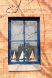 Sail Boats on the Window Sill