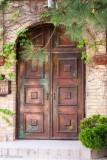 Old Brass Door
