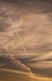 Contrail at sunset.