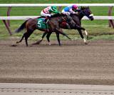 Race 3 August 7, 2013