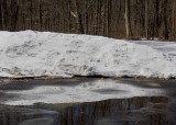Reflections of Winter and the Spring thaw.  I hope.  :)