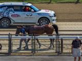 A moment at Saratoga Race Course