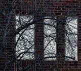 Tree - reflecting  on itself