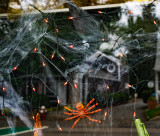 Halloween decorations in a store window