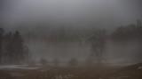 March Mist