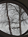 Through an oval window