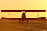 645_5003 DH 82-C Tiger Moth C-GTAL