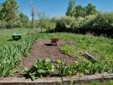 0614 Garden