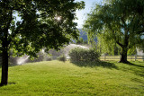 8326 irrigation.jpg