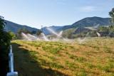 8330 irrigation.jpg