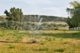 8341 Irrigation.jpg