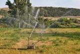 8344 Irrigation.jpg