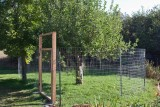 8383 Apple security fence