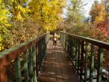 0873 Sage on bridge.jpg