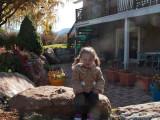 0879 Sage on boulder.jpg