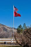 8615 Happy Veterans Day and Marine Corps birthday