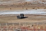 8711 Elk.jpg