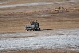 8712 Elk.jpg
