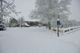 8715 Snow