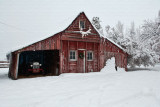 8729 Snow