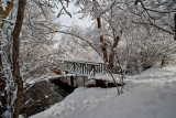 8732 Bridge