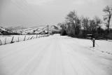 8852 Snowy road at dusk