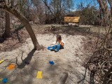 1180 Sage at beach.jpg