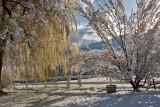 8974 April 23 snow.jpg