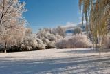8975  April 23 snow.jpg