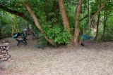 9385 Swing.jpg