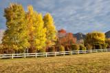 9846 House colors.jpg