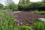 0621 garden.jpg