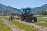 0755 First mow Jim raking.jpg