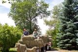 0783 Hay Ride.jpg