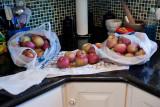 1298 Macs for pie.jpg