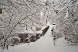 1715 Snow Dec 22 2015.jpg