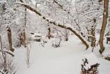 1722 Snow Dec 22 2015.jpg