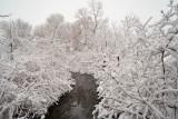 1723 Snow Dec 22 2015.jpg