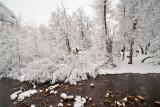 1725 Snow Dec 22 2015.jpg