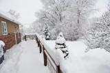 1952 Snow Jan 30 2016.jpg