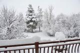 1953 Snow Jan 30 2016.jpg