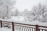 1955 Snow Jan 30 2016.jpg
