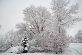 1956 Snow Jan 30 2016.jpg
