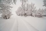 1960 Snow Jan 30 2016.jpg