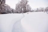 1963 Snow Jan 31  2016.jpg