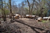 2188 splitting wood.jpg