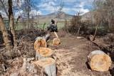 2190 splitting wood.jpg